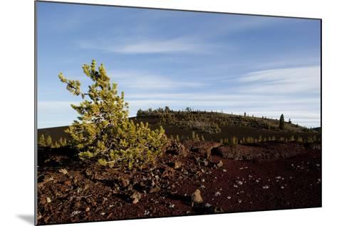 Volcanic Lava Fields, Craters of the Moon National Monument, Idaho-Paul Souders-Mounted Photographic Print