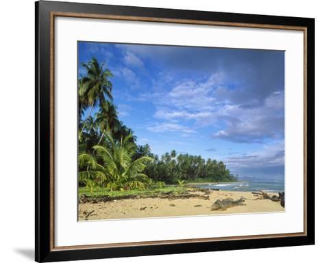 Beach in Limon, Costa Rica-Guido Cozzi-Framed Art Print