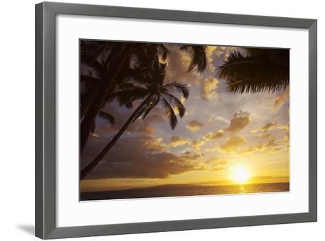 Sunset with Palm Trees in Kihei, Maui, Hawaii-Ron Dahlquist-Framed Art Print