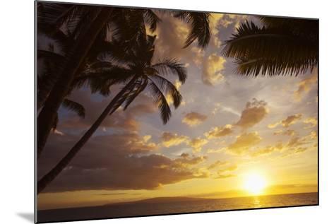 Sunset with Palm Trees in Kihei, Maui, Hawaii-Ron Dahlquist-Mounted Photographic Print