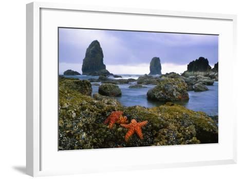 Cannon Beach Panoramic-Steve Terrill-Framed Art Print
