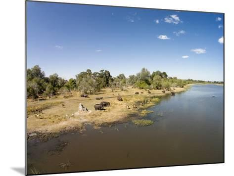 Aerial View of Hippo Pond, Moremi Game Reserve, Botswana-Paul Souders-Mounted Photographic Print