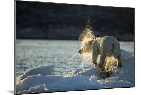 Polar Bear on Iceberg in Hudson Bay, Nunavut, Canada-Paul Souders-Mounted Photographic Print