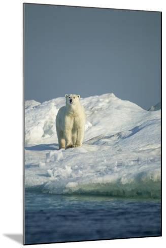 Polar Bear on Iceberg, Hudson Bay, Nunavut, Canada-Paul Souders-Mounted Photographic Print