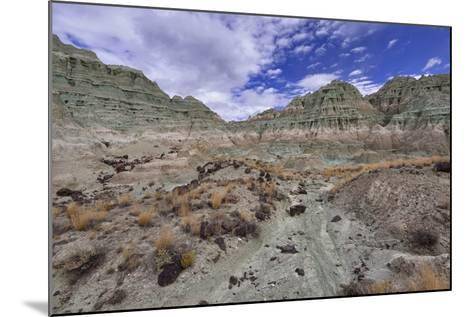 Blue Basin Unit-Steve Terrill-Mounted Photographic Print