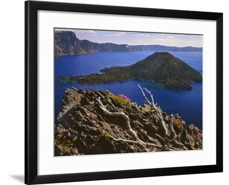 Penstemon Blooms on Cliff Overlooking Wizard Island-Steve Terrill-Framed Art Print