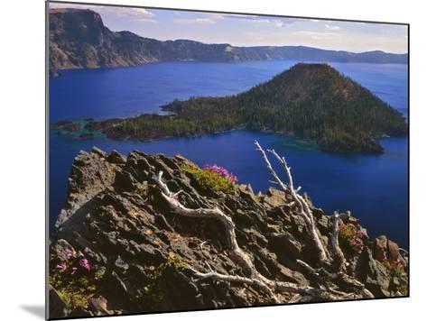 Penstemon Blooms on Cliff Overlooking Wizard Island-Steve Terrill-Mounted Photographic Print