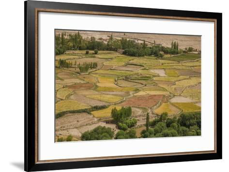 Chemde Monastery, near Karu, Corn Field around Monastery-Guido Cozzi-Framed Art Print