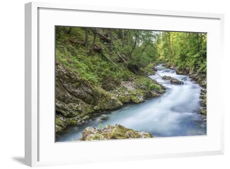 Vintgar Gorge-Rob Tilley-Framed Art Print