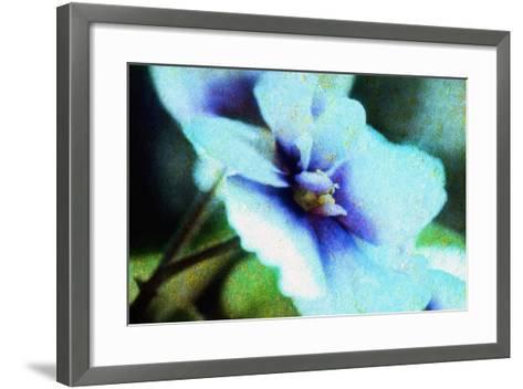 Violet-Andr? Burian-Framed Art Print