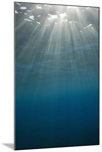 Sunbeams Filtering through the Ocean Surface-Reinhard Dirscherl-Mounted Photographic Print
