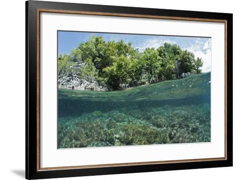 Shallow Coral Reef, Raja Ampat, West Papua, Indonesia-Reinhard Dirscherl-Framed Art Print