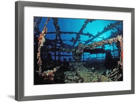 Scuba Diver Diving on Umbria Shipwreck, Sudan, Africa, Red Sea, Wingate Reef-Reinhard Dirscherl-Framed Art Print