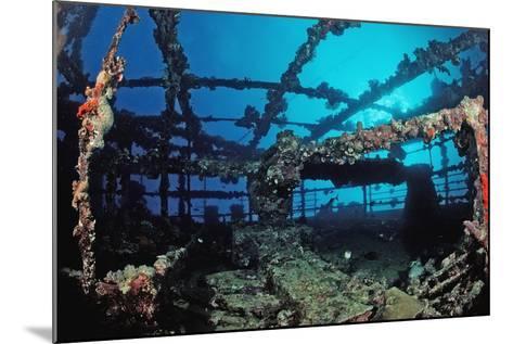 Scuba Diver Diving on Umbria Shipwreck, Sudan, Africa, Red Sea, Wingate Reef-Reinhard Dirscherl-Mounted Photographic Print