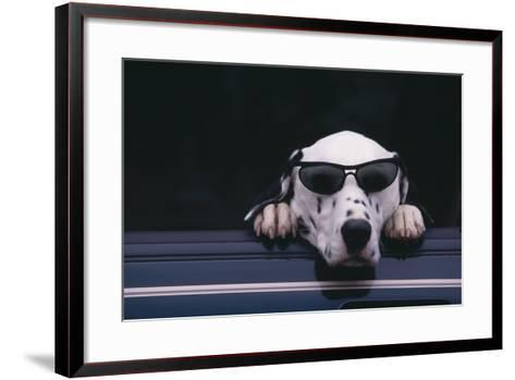 Dalmatian Wearing Sunglasses-DLILLC-Framed Art Print