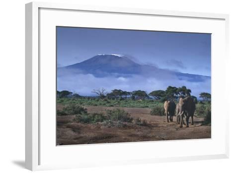Elephants and Mountain-DLILLC-Framed Art Print