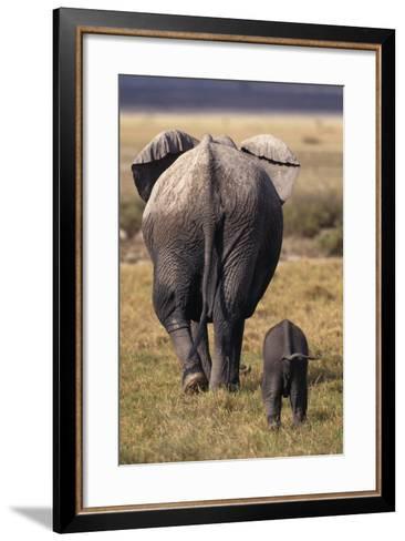 Mother and Baby Elephant-DLILLC-Framed Art Print