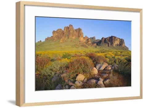 Wildflowers in the Desert-DLILLC-Framed Art Print