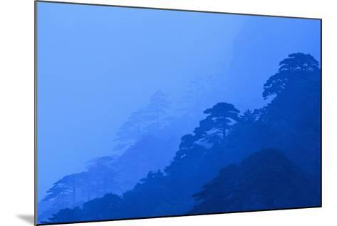 Mt. Huangshan Pine Trees-DLILLC-Mounted Photographic Print