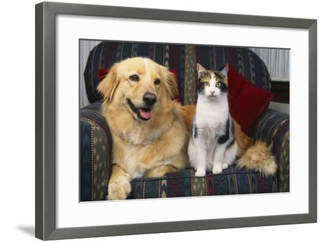 Cat and Dog Sitting Together-DLILLC-Framed Art Print