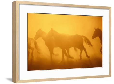 Wild Horses-DLILLC-Framed Art Print