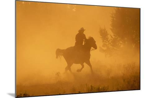 Cowgirl Riding in the Dust-DLILLC-Mounted Photographic Print