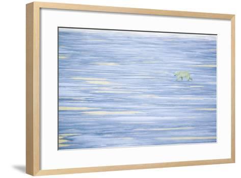 Polar Bear on a Sea of Ice-DLILLC-Framed Art Print