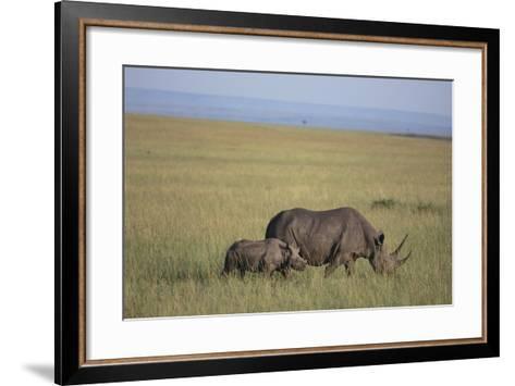 Black Rhinoceros-DLILLC-Framed Art Print