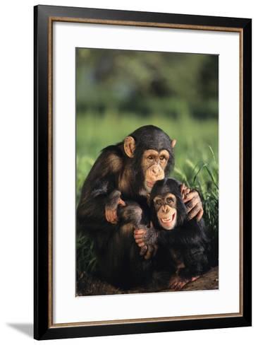 Happy Chimpanzee Family-DLILLC-Framed Art Print