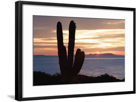 Sunset off Baja Coast-DLILLC-Framed Art Print