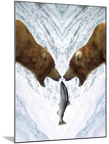 Grizzly Bears Catching Fish-DLILLC-Mounted Photographic Print