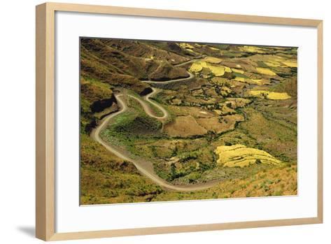 Rural Road and Yellow Landscape-Jon Hicks-Framed Art Print