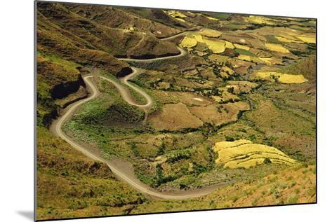 Rural Road and Yellow Landscape-Jon Hicks-Mounted Photographic Print