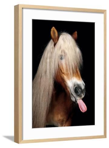 Horse-Fabio Petroni-Framed Art Print