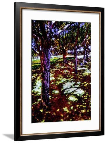 Park-Andr? Burian-Framed Art Print