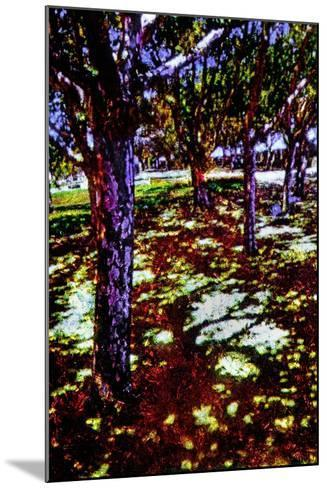 Park-Andr? Burian-Mounted Photographic Print