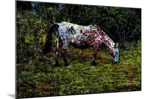 Piebald-Andr? Burian-Mounted Photographic Print
