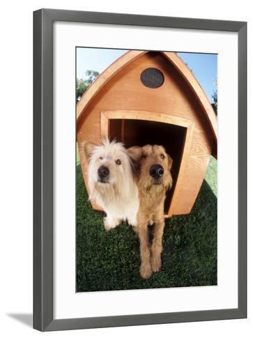 Dogs Sharing a House-DLILLC-Framed Art Print