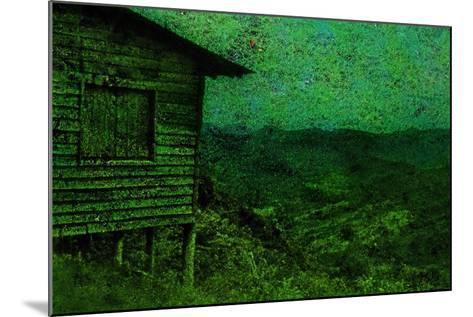 Green-Andr? Burian-Mounted Photographic Print