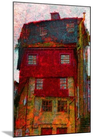 House-Andr? Burian-Mounted Photographic Print