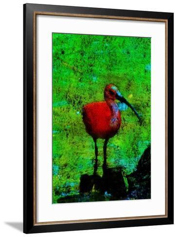 Guar?-Andr? Burian-Framed Art Print