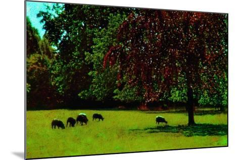 Country Side-Andr? Burian-Mounted Photographic Print