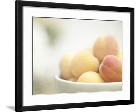 Apricots in a White Bowl Still Life-Steve Lupton-Framed Art Print