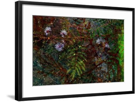 Nature-Andr? Burian-Framed Art Print