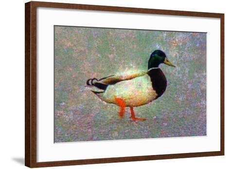 Duck-Andr? Burian-Framed Art Print
