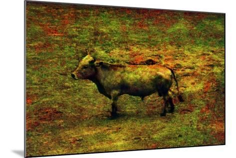 Bull-Andr? Burian-Mounted Photographic Print