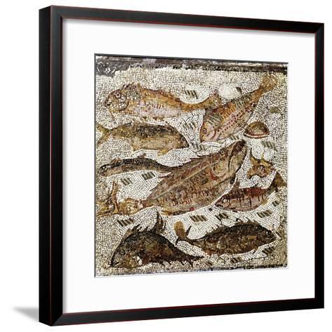 Roman Art : Fishes--Framed Art Print