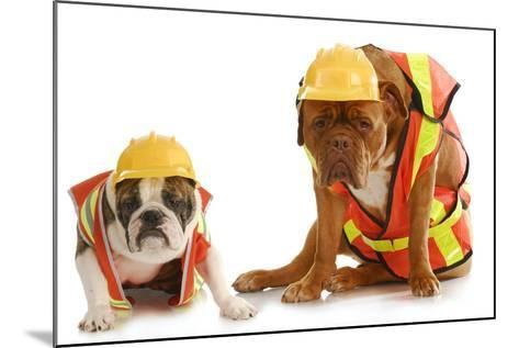 Working Dogs - English Bulldog And Dogue De Bordeaux Dressed Like Very Tire Construction Workers-Willee Cole-Mounted Photographic Print