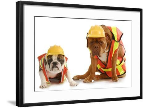 Working Dogs - English Bulldog And Dogue De Bordeaux Dressed Like Very Tire Construction Workers-Willee Cole-Framed Art Print