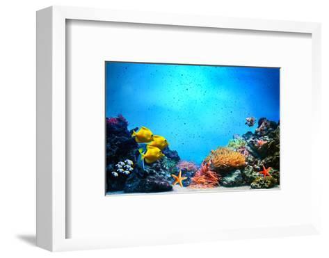 Underwater Scene-Michal Bednarek-Framed Art Print